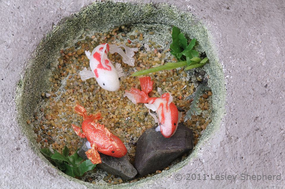 Make miniature butterfly koi from polymer clay for Miniature fish pond