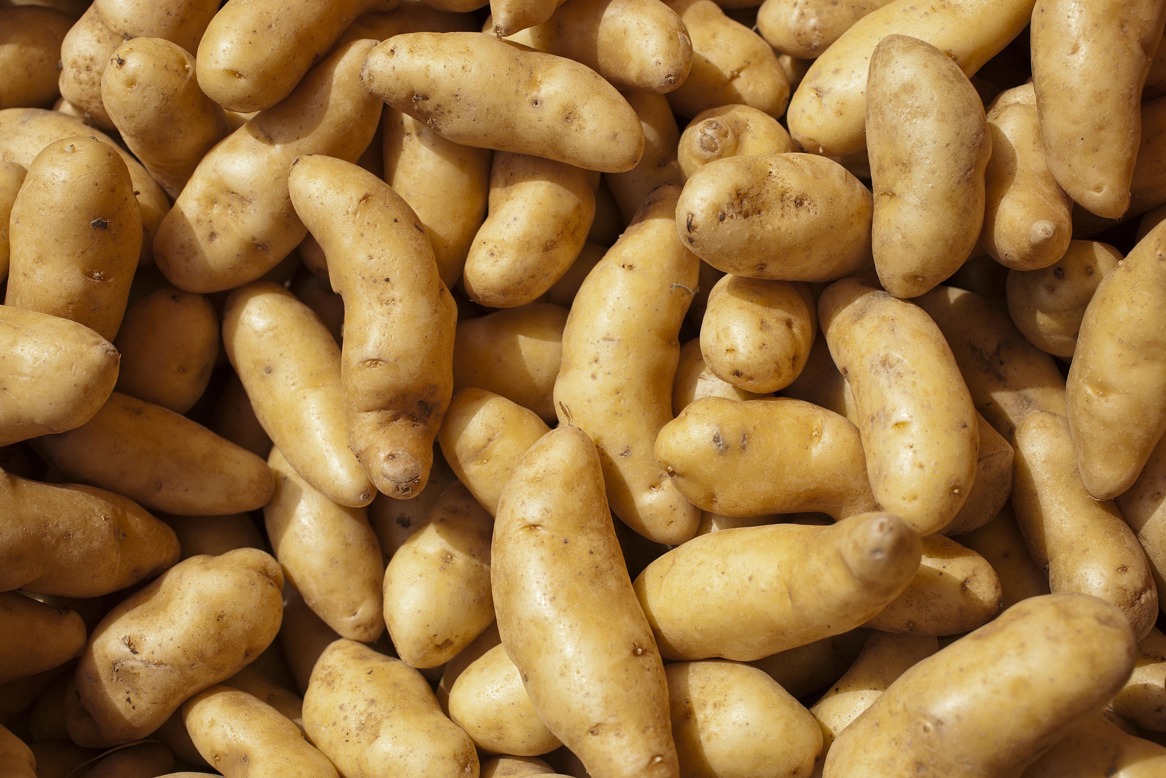 Easy Pan Roasted Fingerling Potatoes Recipe