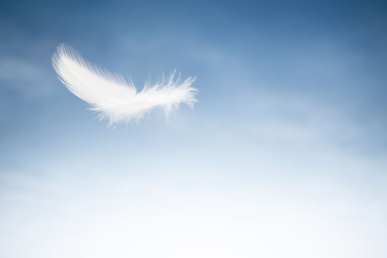 Feather floating in sky