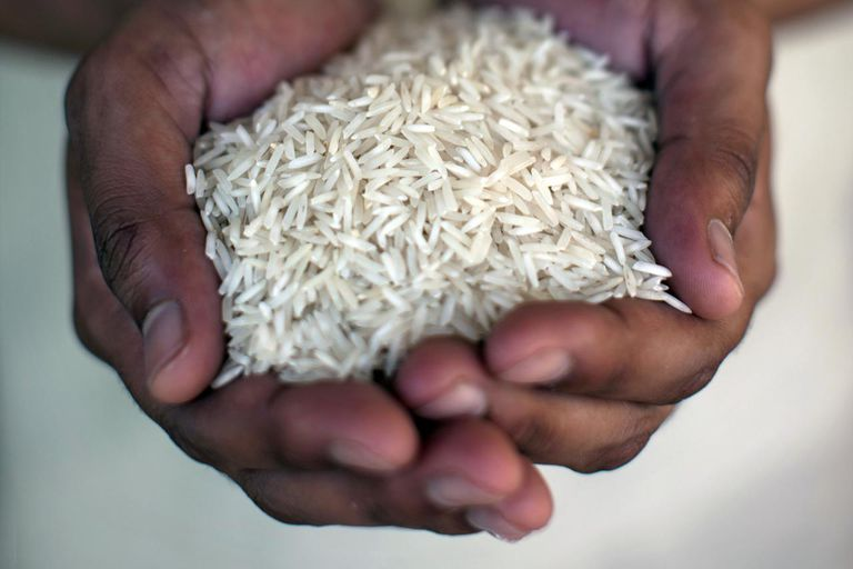 Close up of hands holding rice