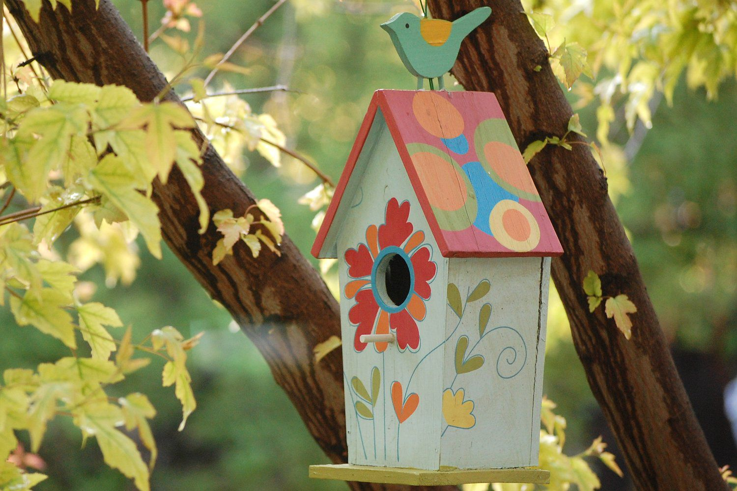 The Best Times To Put Up Birdhouses