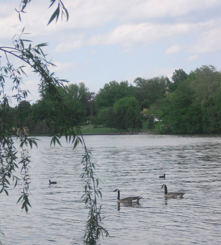 Lake Springfield near the University of Illinois at Springfield campus