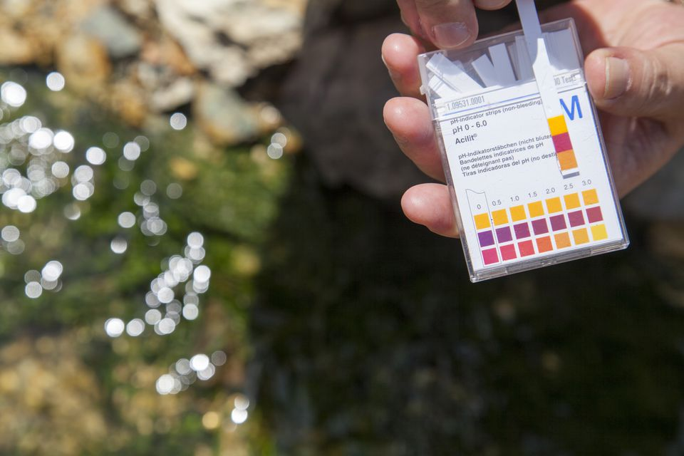 Scientist measuring the ph on a contaminated river