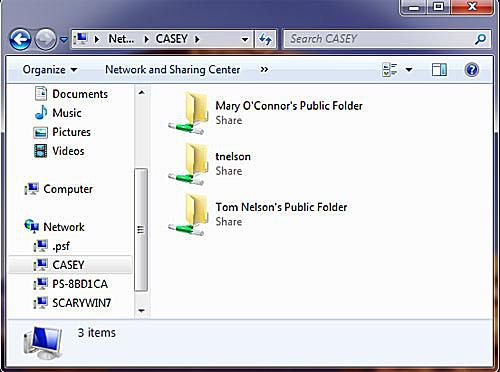 File Sharing With Snow Leopard: Sharing OS X 10.6 Files With Windows 7