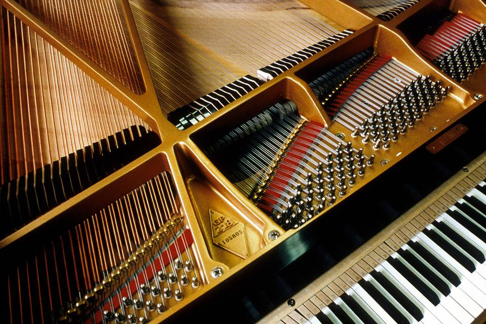 The strings on a Steinway piano are revealed