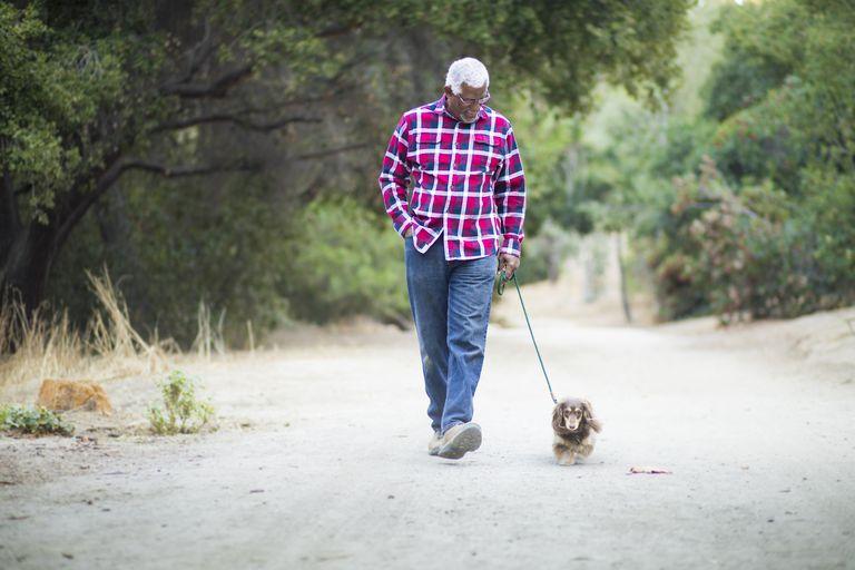 man walking a dog