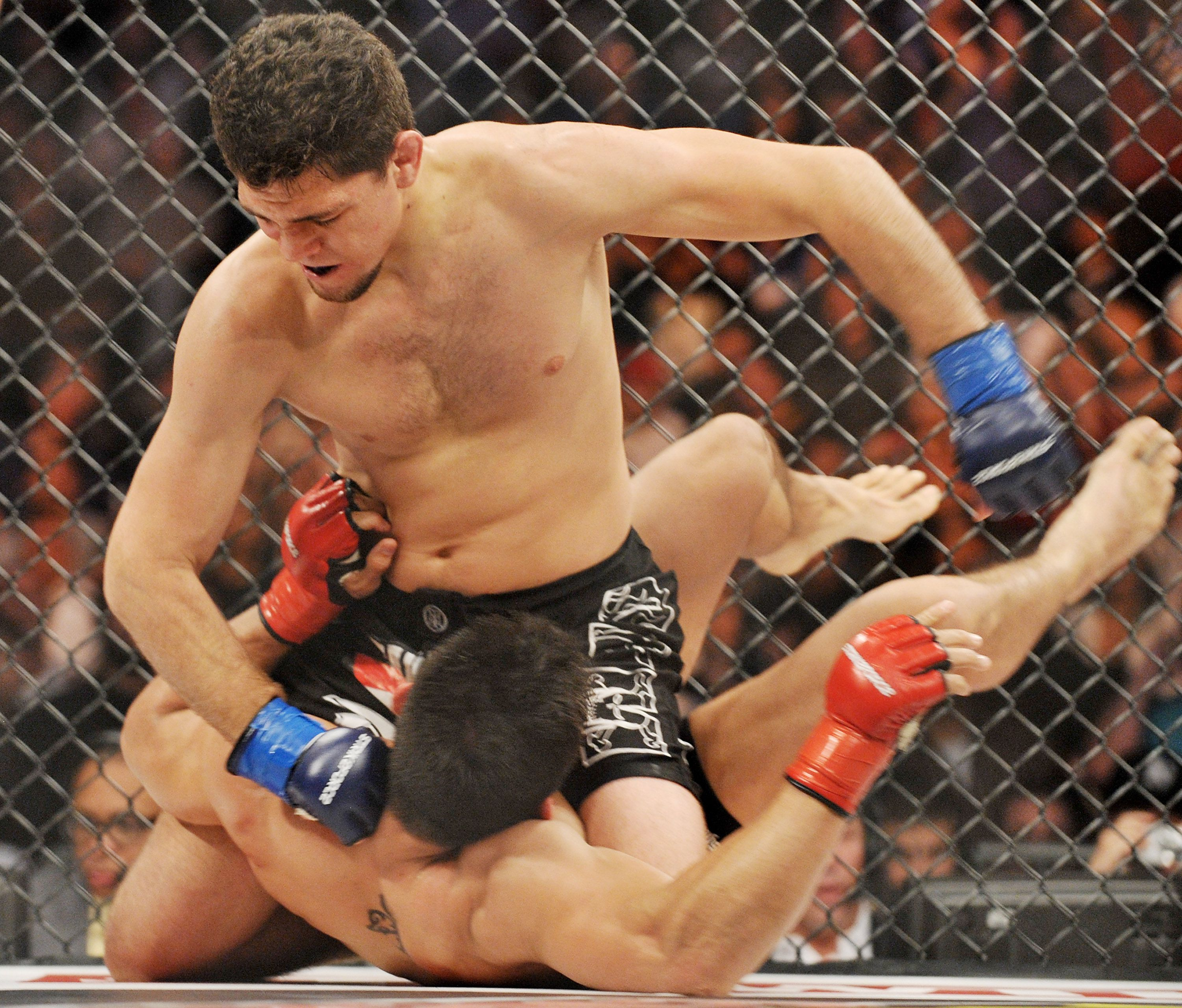 biography and profile of mma fighter frank mir