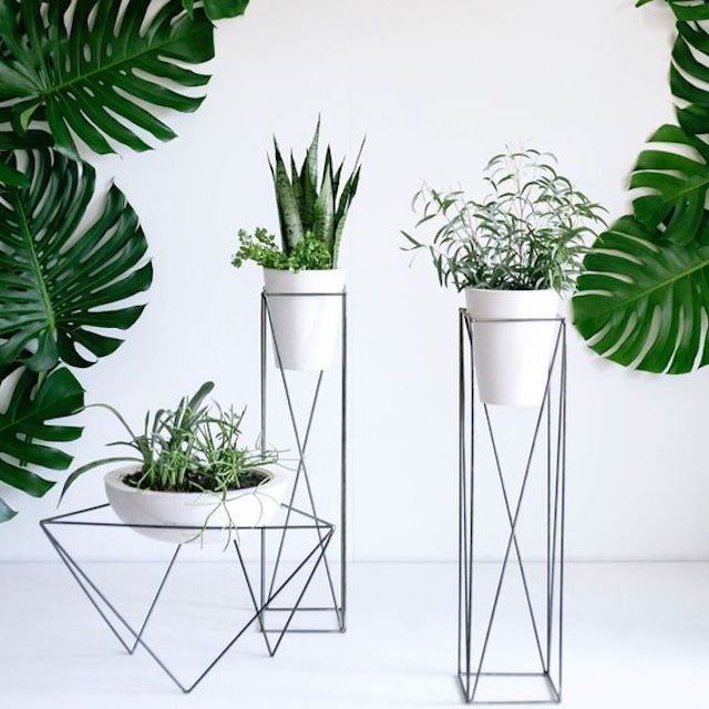 indoor deas and pin modern planter etsy g cactus ft pinterest planters square squares