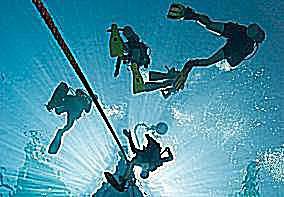 Divers descend along an anchor line.