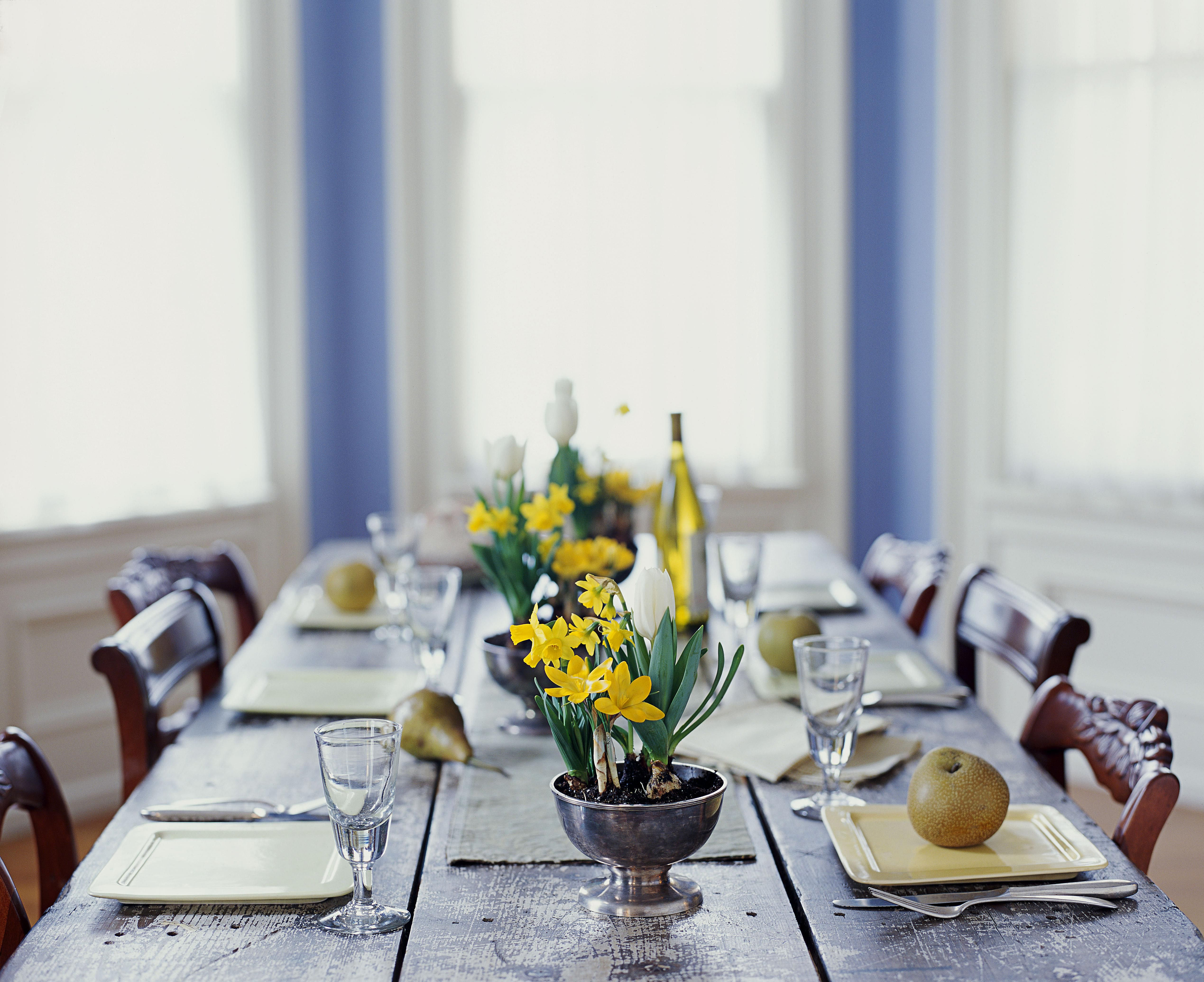 10 actividades familiares para celebrar la llegada de la primavera