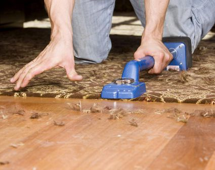 Cork Flooring Advantages And Disadvantages