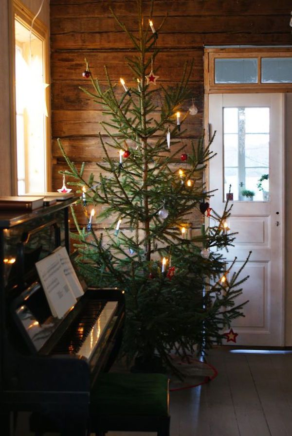 12 Scandinavian Christmas Trees