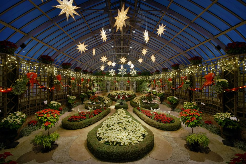 The Broderie Room at the Phipps Conservatory and Botanical Gardens