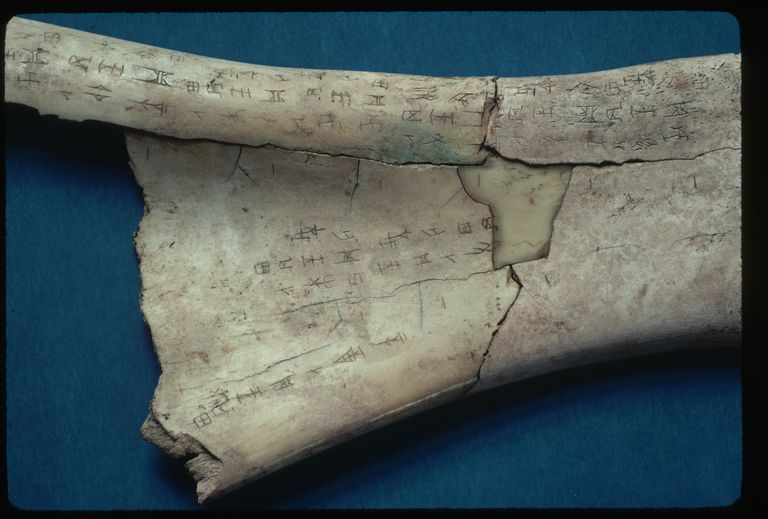 Shang Dynasty Oracle Bone