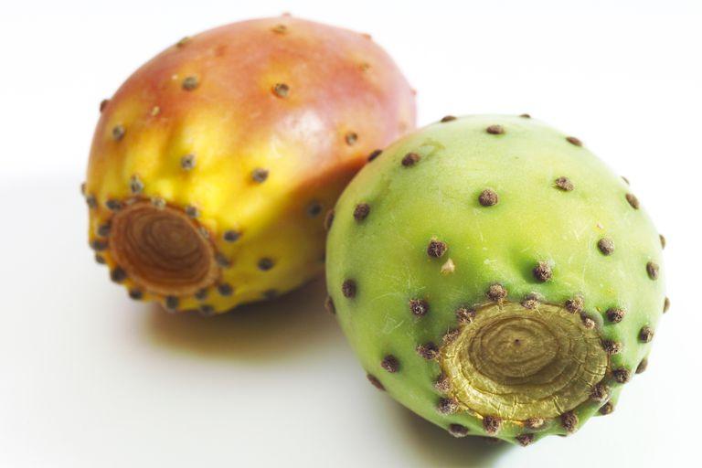 Prickly pear cactus, close up