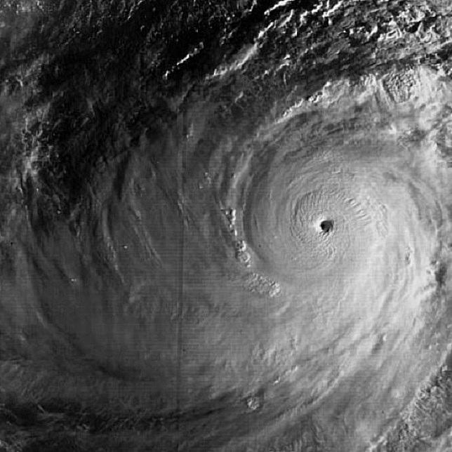 Typhoon Tip 1979-satellite