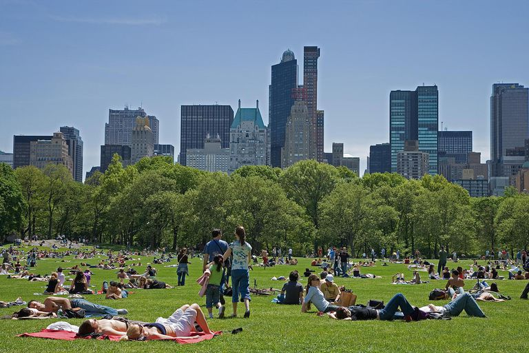 New York as a global city is a significant place in the mental maps of people around the world.