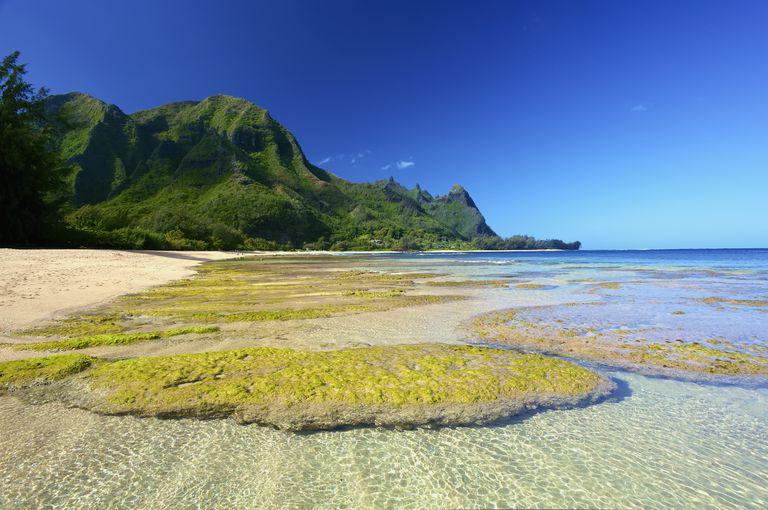 Hawaii Printables