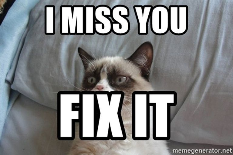 Grumpy Cat misses you.
