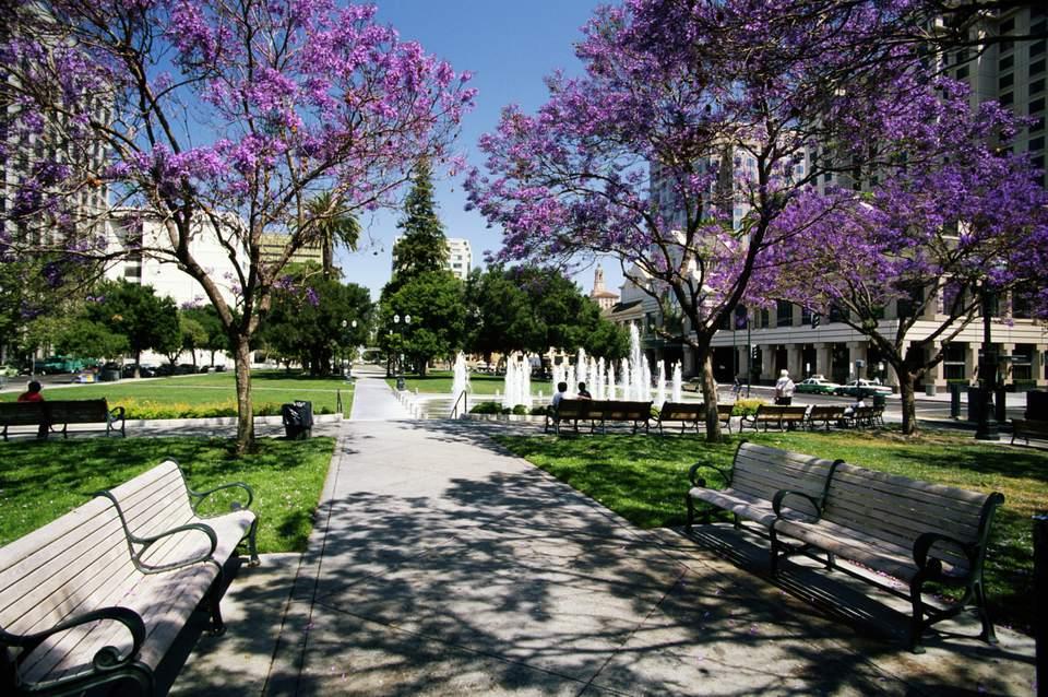 Top Things to do in San Jose | Cesar Chavez Park, Downtown San Jose