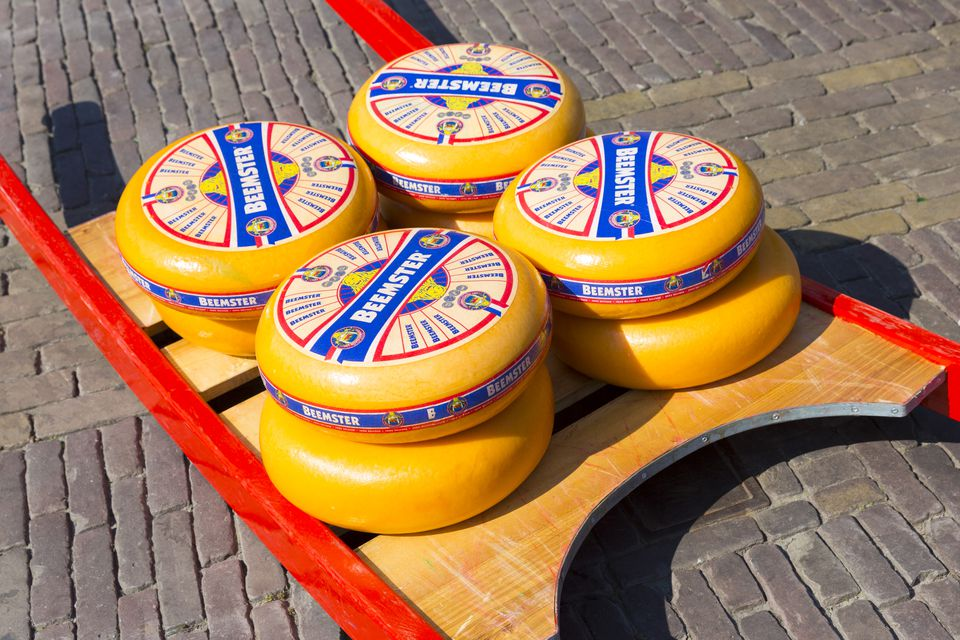 Beemster Gouda Cheese, Alkmaar, the Netherlands