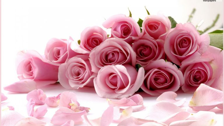17 Free Valentine\'s Day Wallpapers and Backgrounds