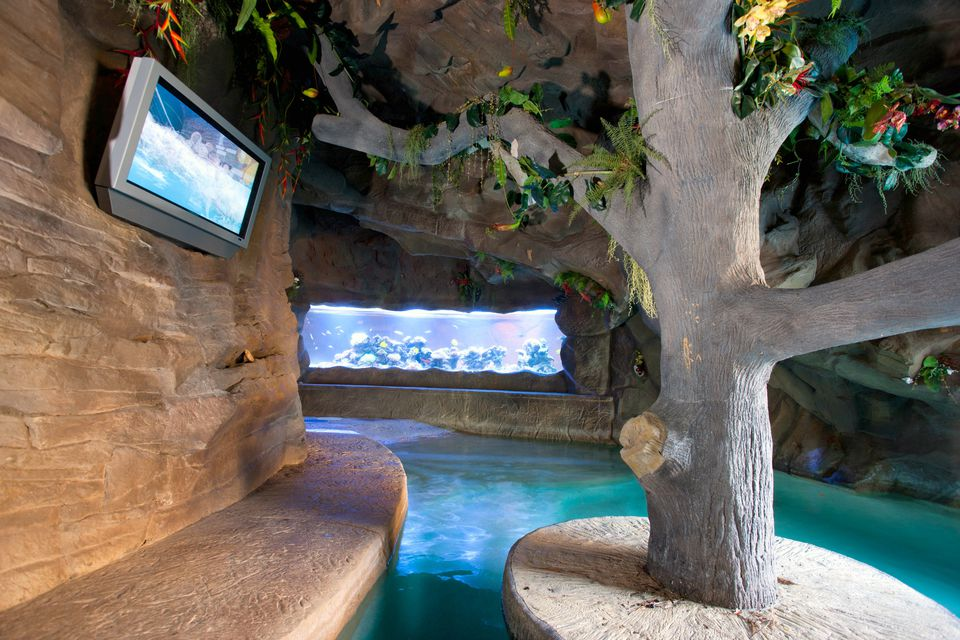 man cave pool grotto