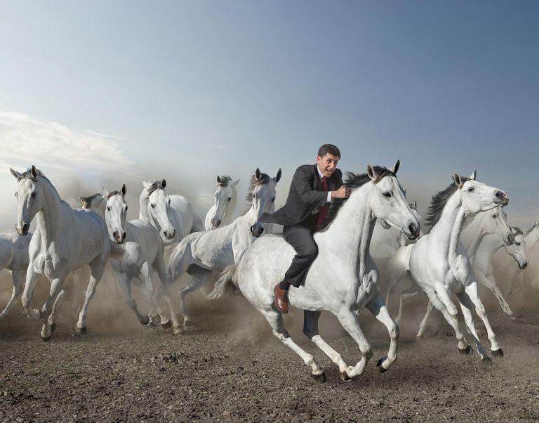 Business Man Riding Horse in Stampede