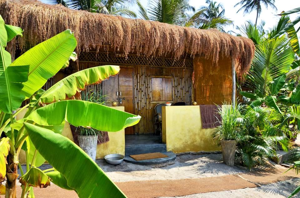 Little Palm Grove, Goa.