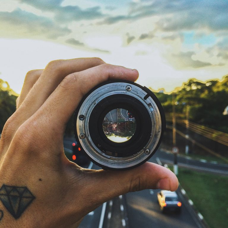 camera lens fungus