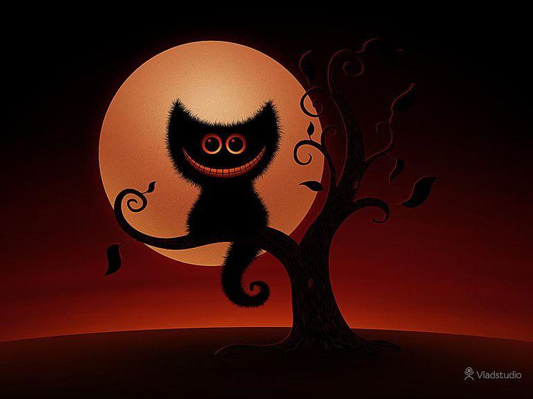halloween cat wallpaper from vladstudio