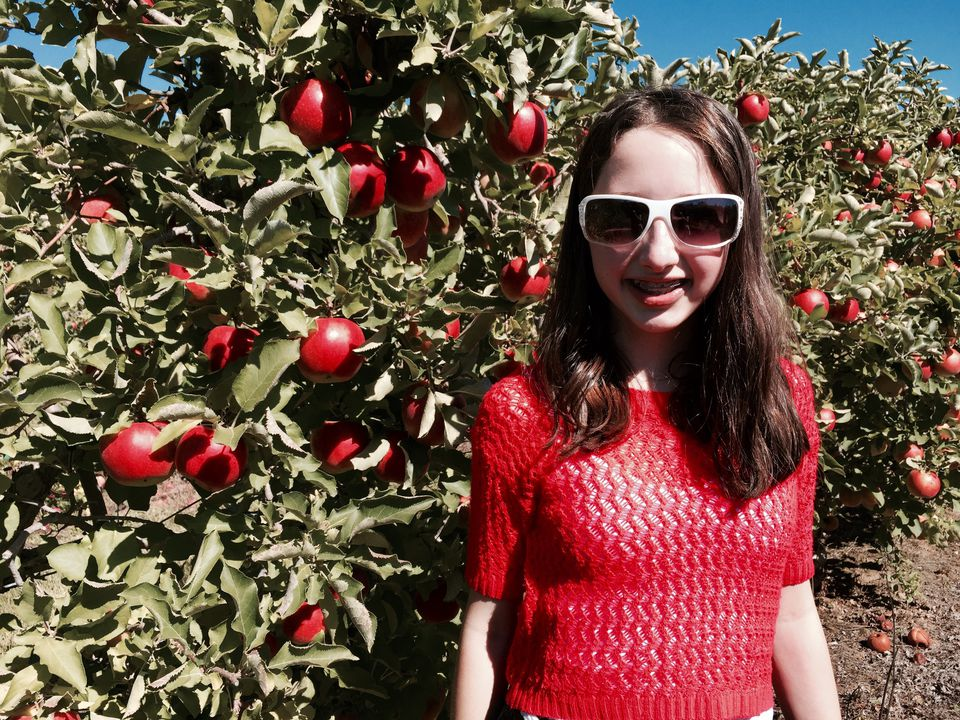 Fall Apple Picking in New England