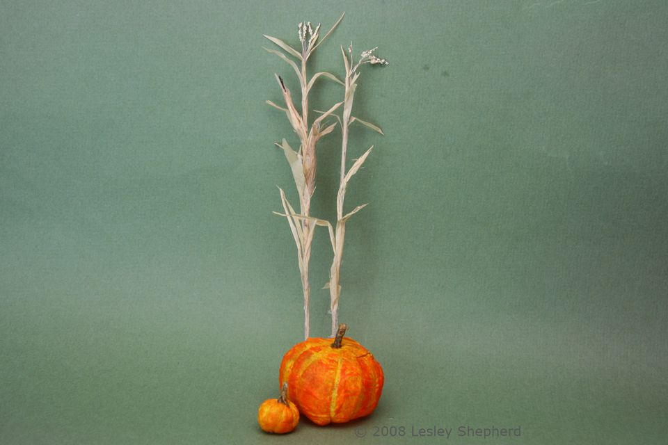 Dried corn stalks and miniature pumpkins ready for a dolls house display.