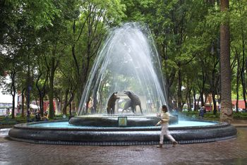 Top 10 Oaxaca City Sights And Activities