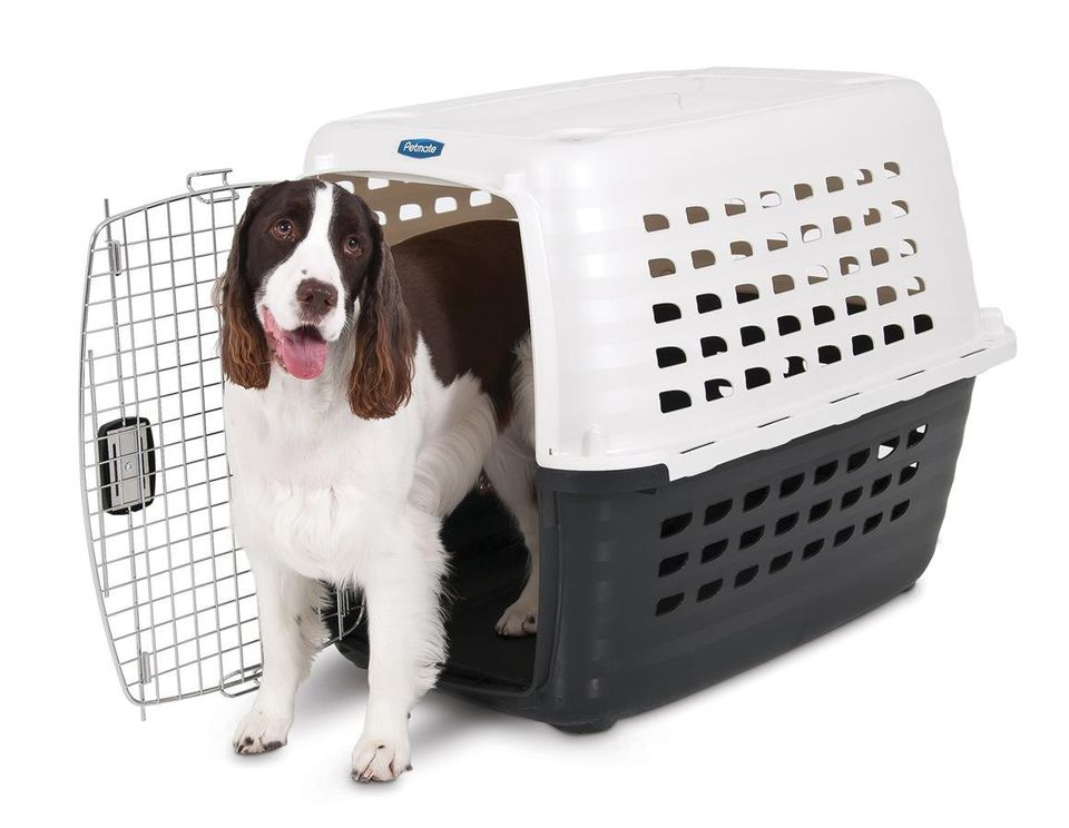 Top 5 Dog Kennel And Crate Styles