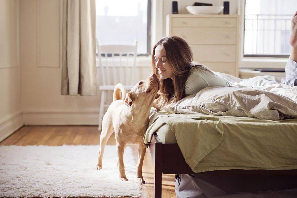 Woman On Bed Kissing Her Dog