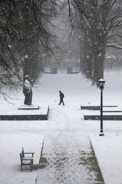 Snow, winter in Memphis