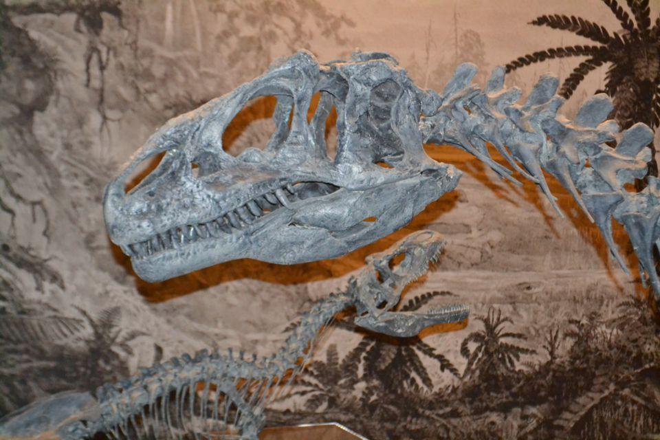 VisitUtah_Dinosaurs.jpg
