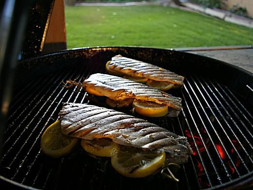 Trout on Charcoal Grill