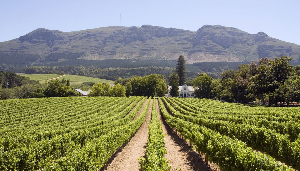 10 Perfect Places To Propose In South Africa