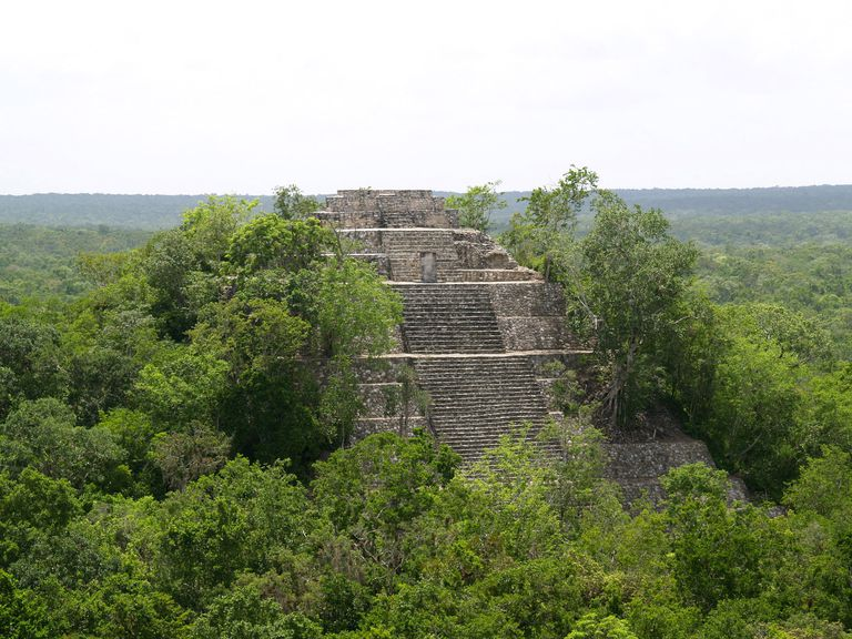 Calakmul was one of the most important Classic period cities.