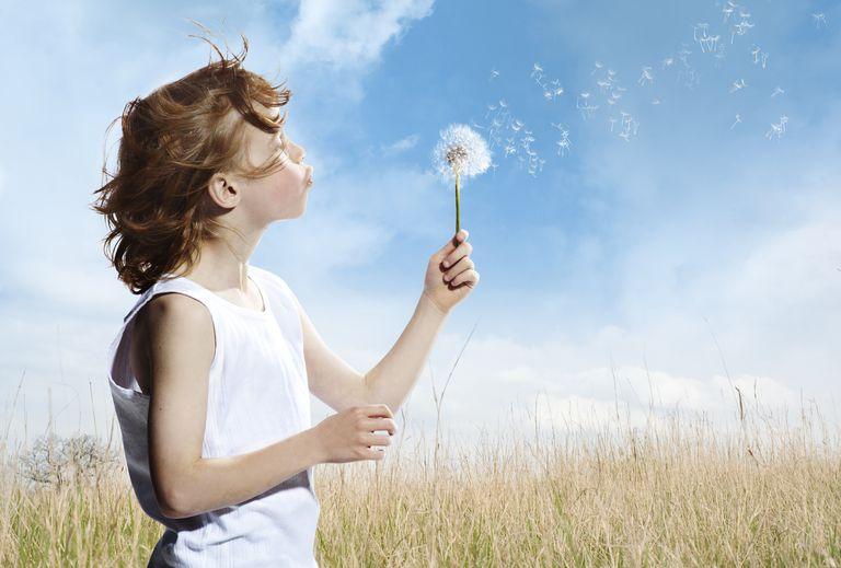 boy blowing a dandelion flower