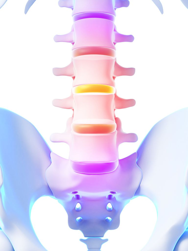 Lumbar spine depiction