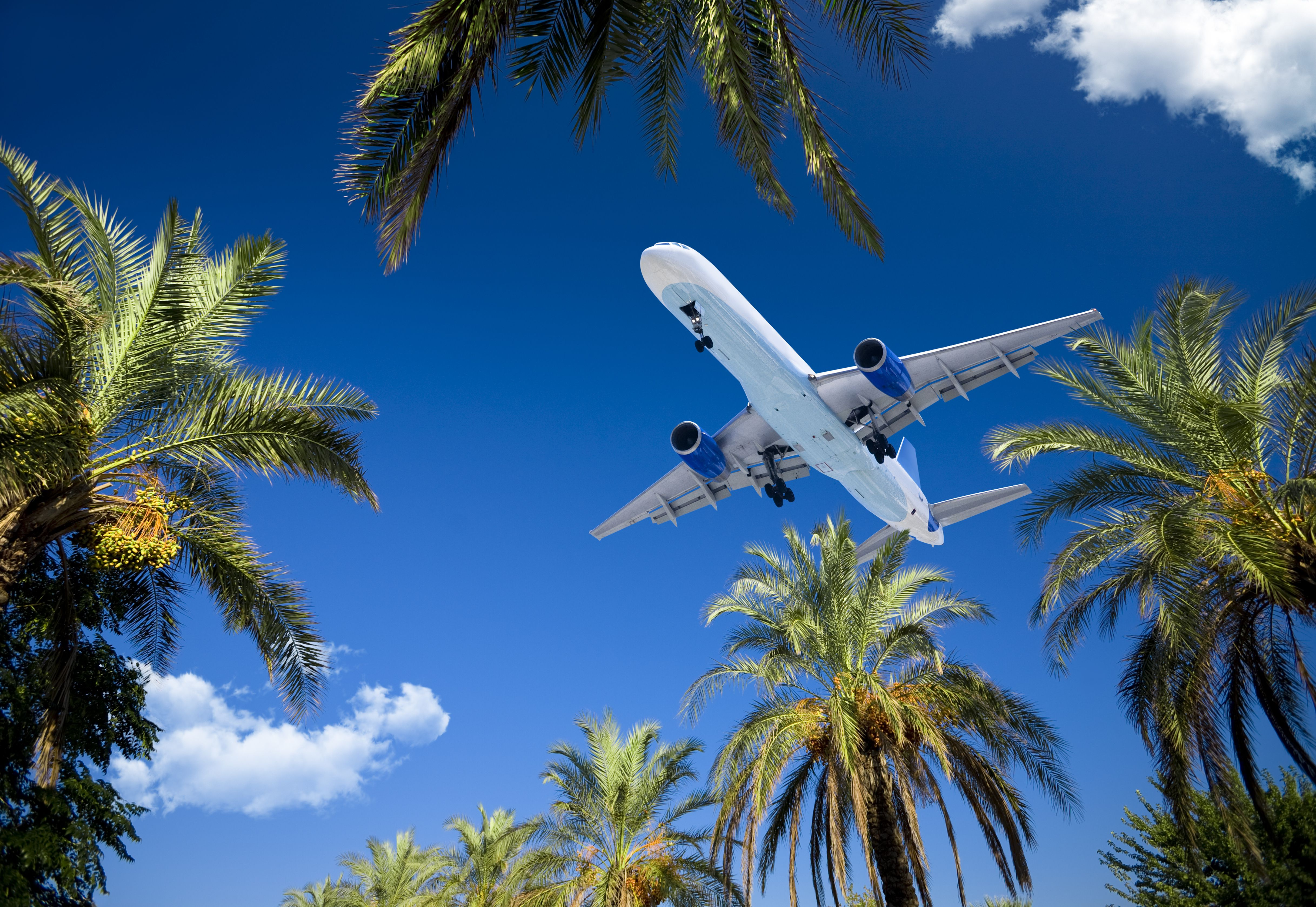Top Caribbean Charter Airlines