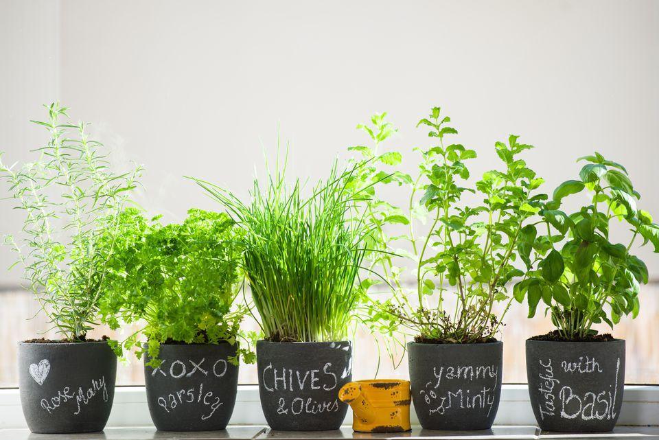 21 diy outdoor decor decorating ideas diy outdoor decor herb garden solutioingenieria Image collections