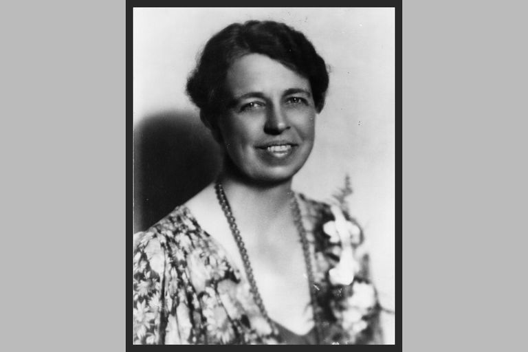 the political career of eleanor roosevelt Eleanor roosevelt was an amazing first  for him unknowing that she was advancing her political career as well once eleanor became first lady it was already.