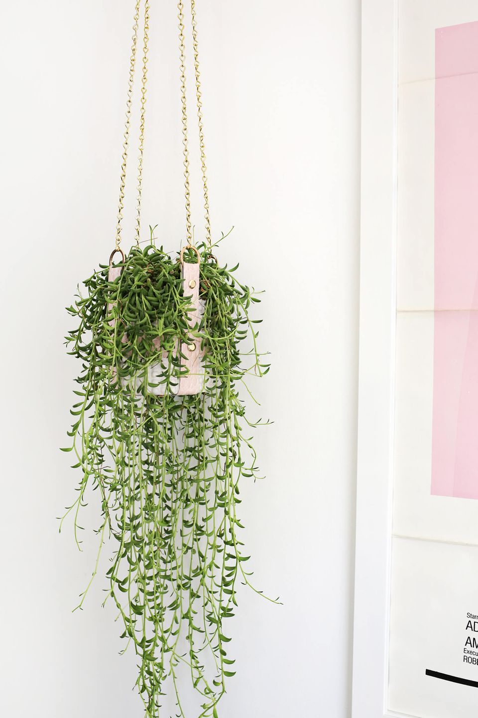 diy hanging leather strap planter