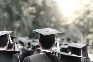 Back of graduates during commencement at university. Close up at graduate cap