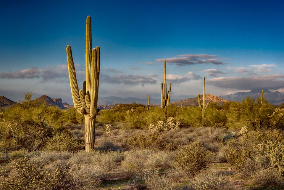 Sunset at the Superstition Mountains, Arizona