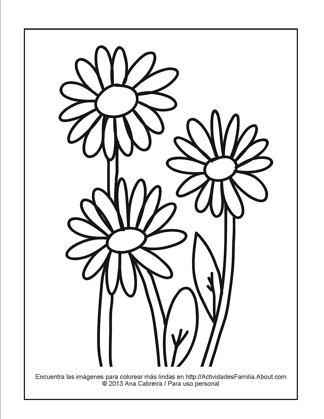 Dorable Flores Para Colorear Páginas Margarita Ilustración - Ideas ...